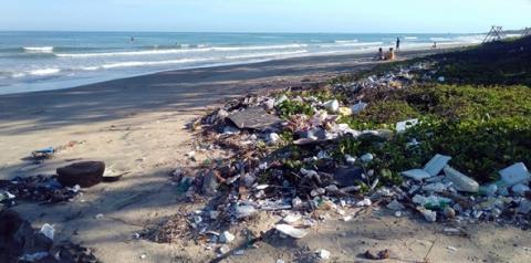 Descarte inadequado de canudos pode ser muito prejudicial à vida marinha