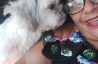 Ex-Funcionário de pet shop é indiciado por maus-trato a cão durante banho e tosa em Macapá/Ap