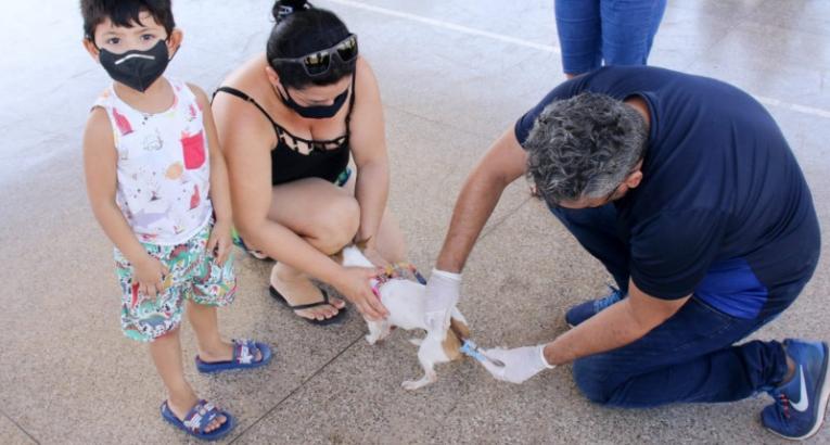 Campanha de vacinação antirrábica chega ao Conjunto Habitacional Açucena em Macapá/Ap