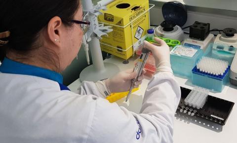 Cientistas estudam remédio de cachorro contra Covid em humanos