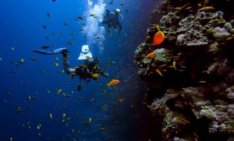 Turismo de experiência ganha destaque durante a pandemia