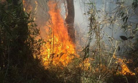 Bombeiros combatem há dois dias incêndio na Serra dos Órgãos